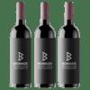 3 Bottle Extreme Altitude Wines